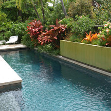 Contemporary Pool by Raymond Jungles, Inc.