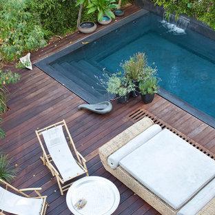 Asian pool in Tel Aviv.