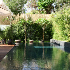 Asian Pool by itamar landscape design
