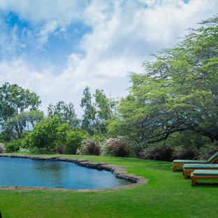 Diseño de piscina natural, exótica, de tamaño medio, a medida, en patio lateral, con suelo de hormigón estampado
