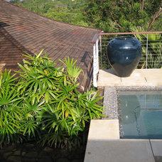 Tropical Pool by Daniel Moran Architect