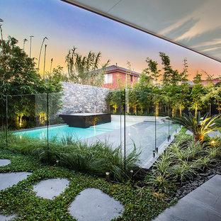 メルボルンのトロピカルスタイルのおしゃれなプールの写真
