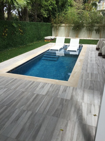 Contemporary Swimming Pool by Somar Pools