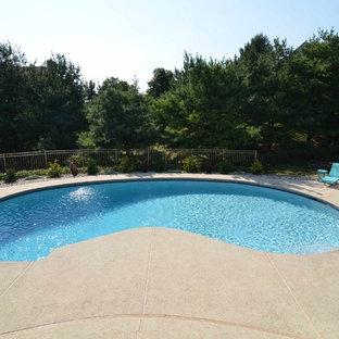Diseño de piscina contemporánea, tipo riñón, en patio trasero