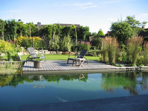 baden gehen wie sie schwimmteiche und naturpools richtig. Black Bedroom Furniture Sets. Home Design Ideas