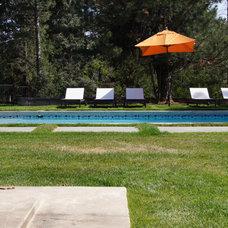 Modern Pool by cky design, inc.