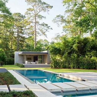 Modelo de piscina alargada, moderna, de tamaño medio, rectangular, en patio trasero, con losas de hormigón