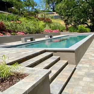 Ejemplo de piscina alargada, minimalista, extra grande, rectangular, en patio trasero, con adoquines de hormigón