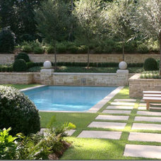 Traditional Pool LandPlus Pool Design