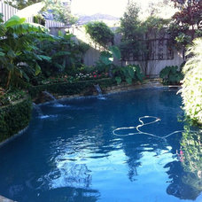 Contemporary Pool by Brumley Gardens