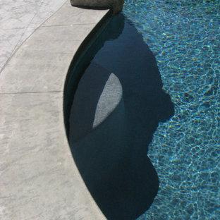 Modelo de piscina retro, de tamaño medio, tipo riñón, en patio trasero, con suelo de hormigón estampado