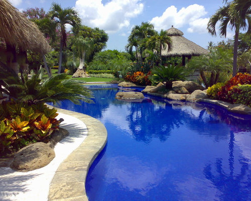 Tropical Plants At Pool Houzz