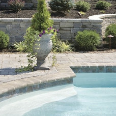 Modern Pool by Landscape Plus, LLC