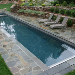 eclectic pool by Lang Pools Inc.