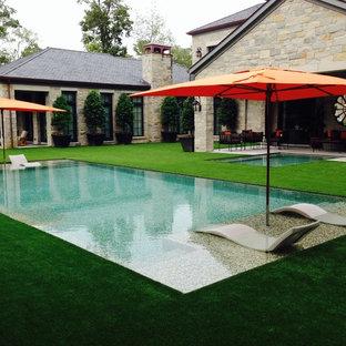 ヒューストンの中サイズの長方形トロピカルスタイルのおしゃれなプールの写真