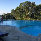 Culbreath Isle Garden Transitional Pool Tampa By