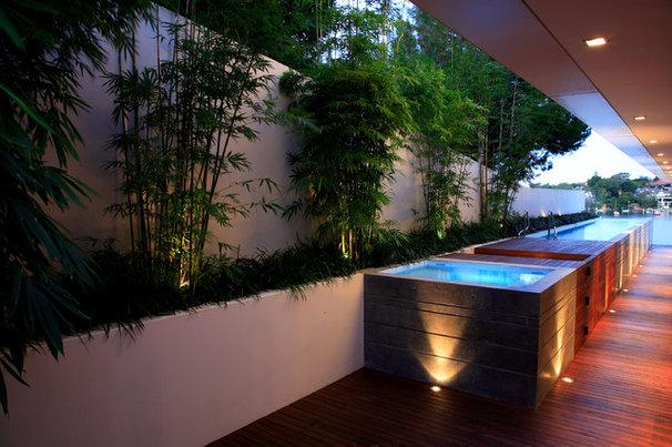 Modern Pool by Secret Gardens