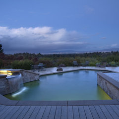 contemporary pool by Kikuchi & Associates