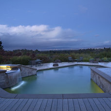 Contemporary Pool by Kikuchi + Kankel Design Group