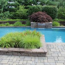 Traditional Pool by Barry Bartakovits Custom Pools / B&B Pools Inc.
