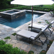 Traditional Pool by Landscape Specialties