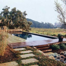 Traditional Pool by Magrane Associates San Francisco