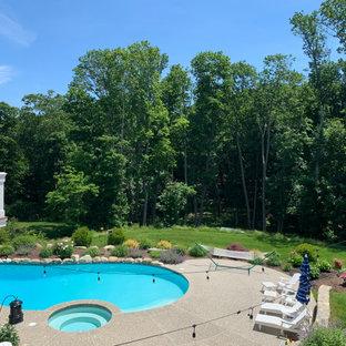 Immagine di un'ampia piscina naturale classica personalizzata dietro casa con pedane