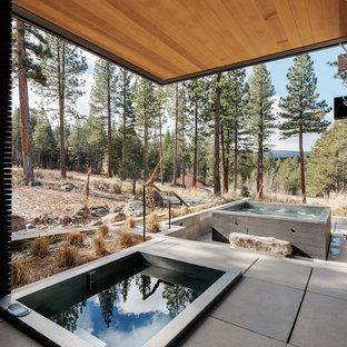 Esempio di una piscina contemporanea rettangolare di medie dimensioni e nel cortile laterale con lastre di cemento e una vasca idromassaggio