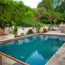 Mediterranean Pool by Artisan Home Resorts