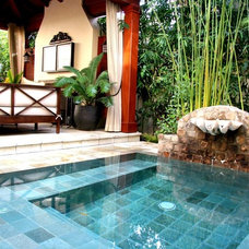 Asian Pool by Hybrid Designscapes
