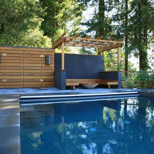 Mid-sized modern backyard rectangular pool in San Francisco with concrete slab.