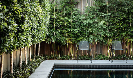 A Landscape Architect Reveals: 3 Things I Wish My Clients Knew