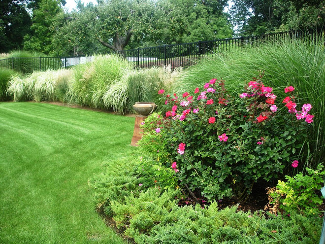 Make your roses even more beautiful with these companion for Maiden grass landscaping ideas
