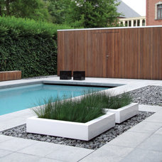 modern pool by usona