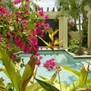 マイアミの大きいオーダーメイドトロピカルスタイルのおしゃれなプール (噴水、天然石敷き) の写真