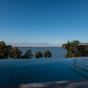 Example of a large minimalist backyard rectangular infinity pool design in Orlando