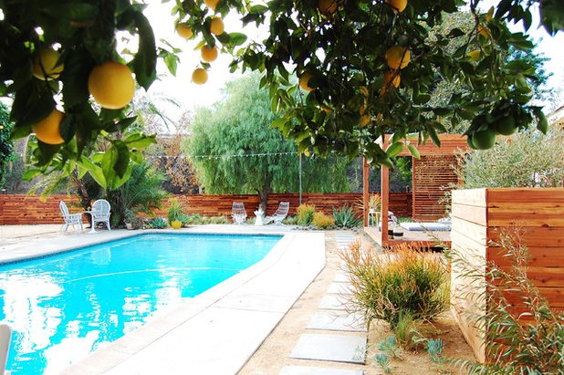 Eclectic Pool by Corynne Pless