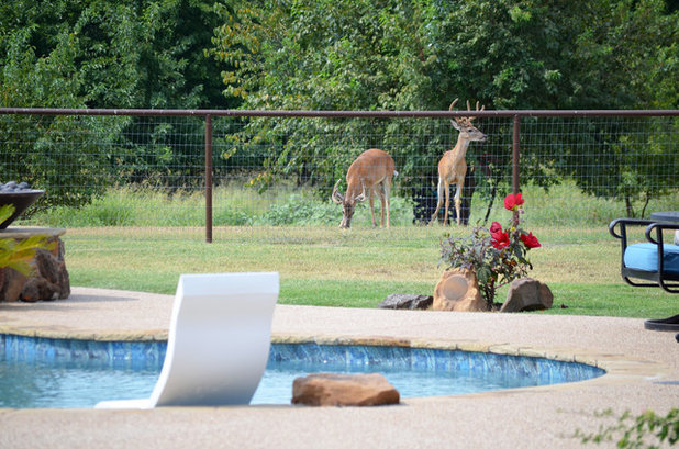 Eclectic Pool by Sarah Greenman
