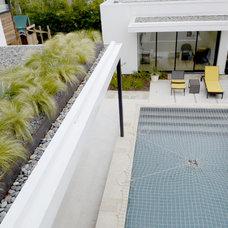 Pool by Kara Mosher