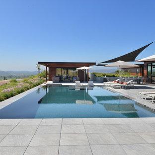 Exemple de grands abris de piscine et pool houses tendance rectangles.