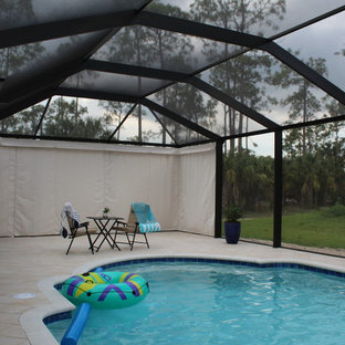 Pool - modern pool idea in Tampa