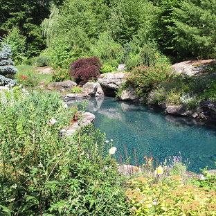 Ejemplo de piscina natural, rural, de tamaño medio, a medida, en patio trasero, con adoquines de ladrillo
