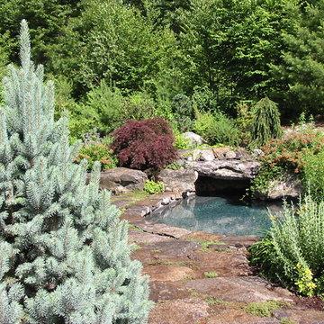 Natural boulder pool