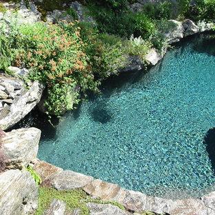 Foto de piscina natural, rústica, de tamaño medio, a medida, en patio trasero, con adoquines de ladrillo