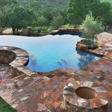 Traditional Pool by Design Ecology