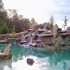 Rustic Pool by Spring Creek Watergardens and Landscape