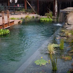 Esempio di una grande piscina naturale tropicale personalizzata dietro casa con fontane e lastre di cemento