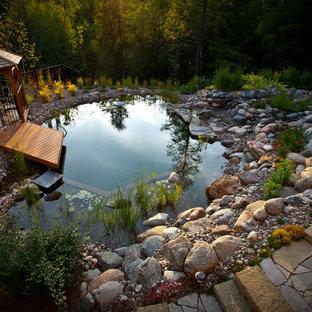 Modelo de piscina natural, clásica, pequeña, a medida, en patio trasero, con adoquines de piedra natural