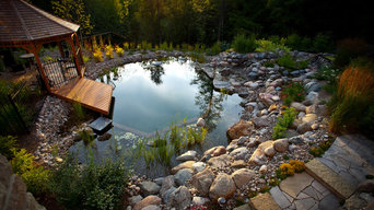 Natural Swimming Pool by the Forest