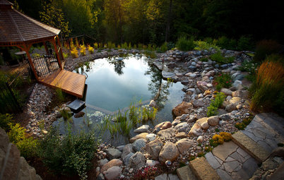 The Beauty of Natural Swimming Pools, Minus The Chemicals